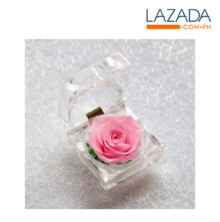 Preserved Flower Rose w/ box