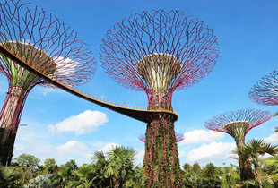 Gardens by the Bay Ticket Singapore starts at P896 on Klook!