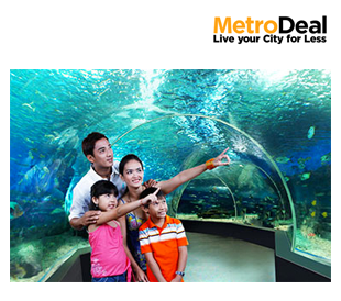 Manila Ocean Park`s 5 Attractions