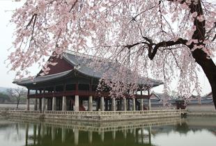 Klook Seoul Voucher