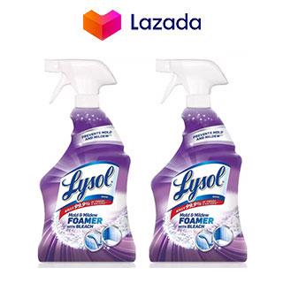 Lysol Mold & Mildew Foamer with Bleach